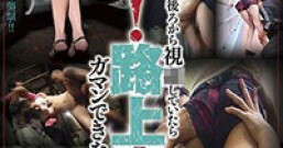 【SVDVD-264】路遇强袭痴汉-藤原瞳(藤原 ひとみ)