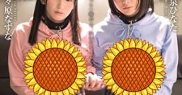 [STARS-067]小泉日向/野野原荠 SODstar×青春时代W分配角色