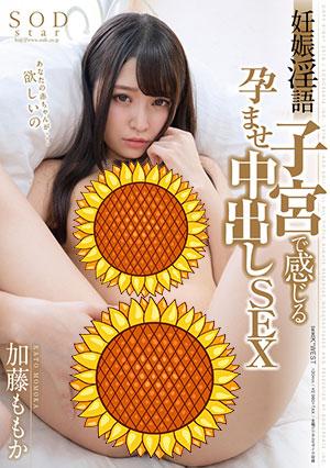 【STAR-977】怀孕的孕妇 加藤桃香(加藤ももか)